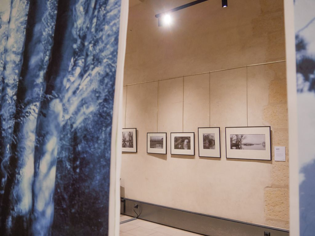 View into the exhibition, in the middle the work of fellow artist Liliana Nadiu