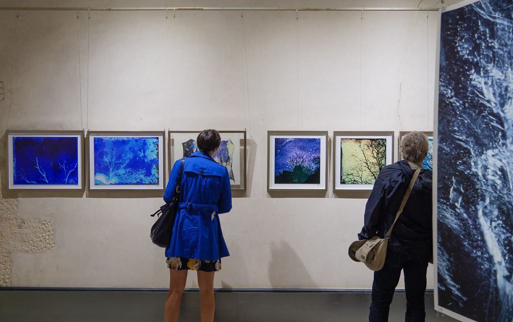 View into the exhibition, on the left the work of festival director and fellow artist Dominique Laroche