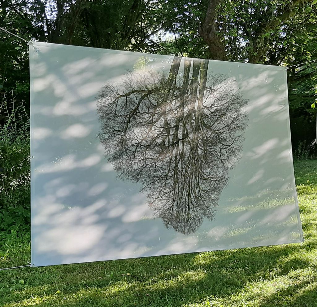 First test hanging in an apple tree garden in my hometown